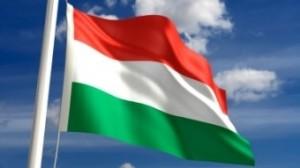 201108221505130.magyar1[1]